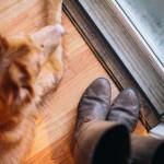 floor-insulation